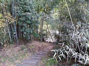 イレブンオートキャンプパーク おびつ川への道のり3