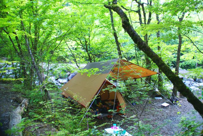 道志 の 森 キャンプ 場 天気