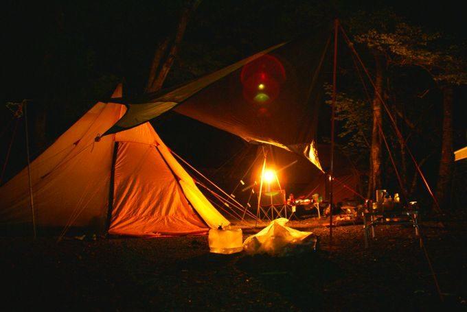 道志の森の夜
