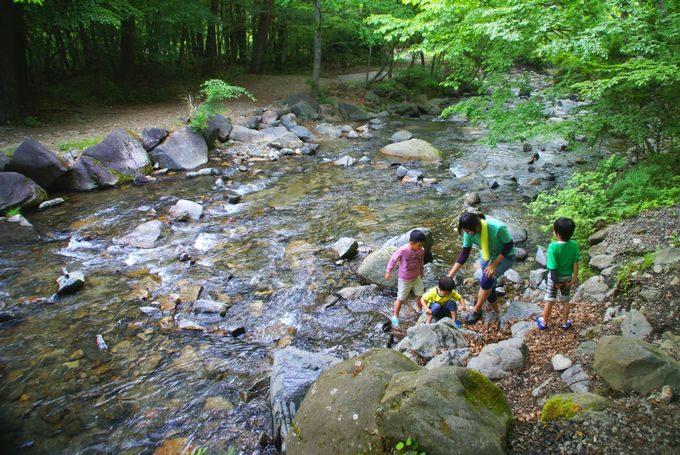 道志の森キャンプ場 川遊び