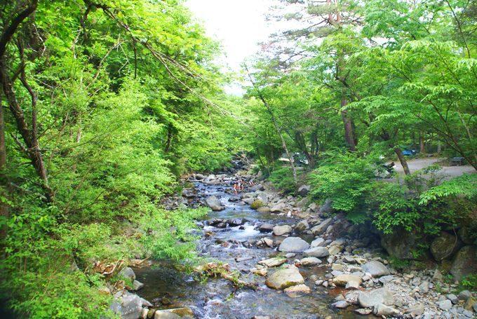 道志の森キャンプ場 川遊び2