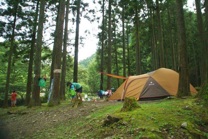キャンプ ボスコ 【体験レポート】ボスコ(BOSCO)オートキャンプベースの魅力を徹底紹介