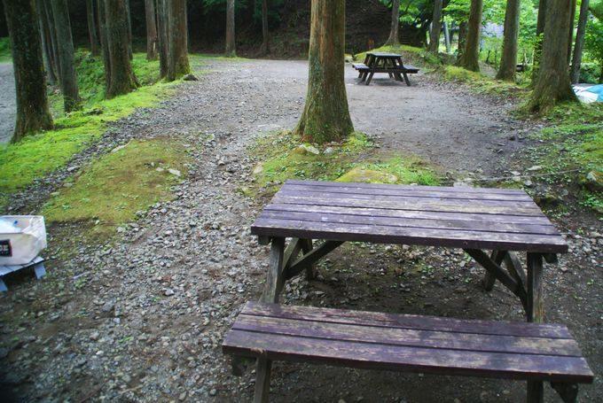 サイト内のピクニックテーブル