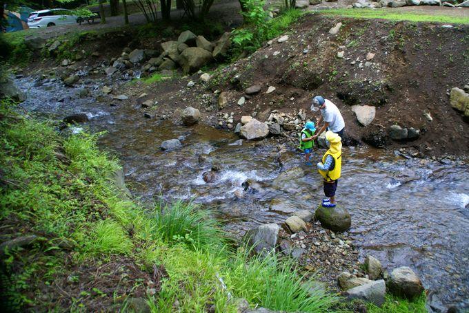 お父さんと川遊び