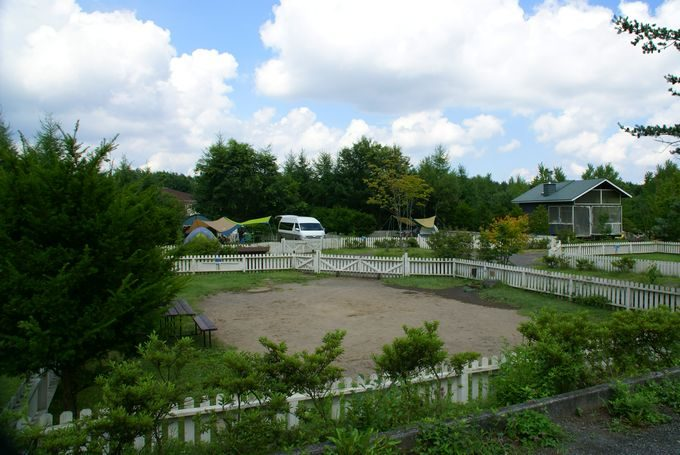 ガーデン広々サイト
