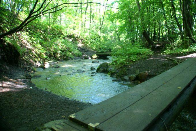 川の架け橋