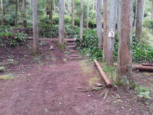 滝沢園オートキャンプサイト1