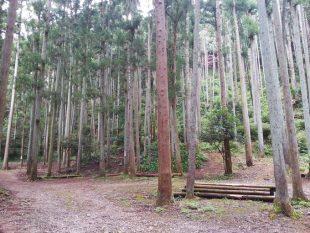 滝沢園オートキャンプサイト2
