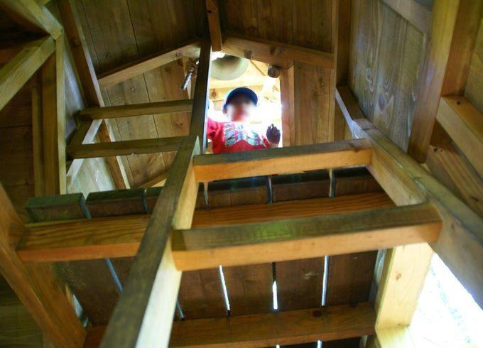 ツリーハウス・ノアの内部