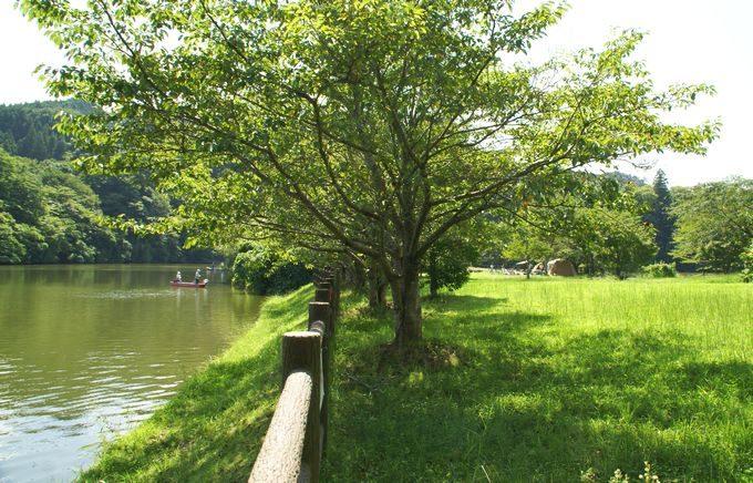 稲ヶ崎キャンプ場 自由広場から眺める湖畔3