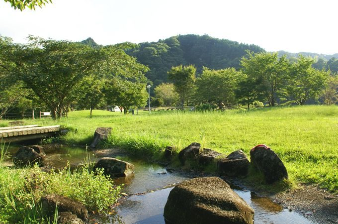 稲ヶ崎キャンプ場 自由広場の小川1