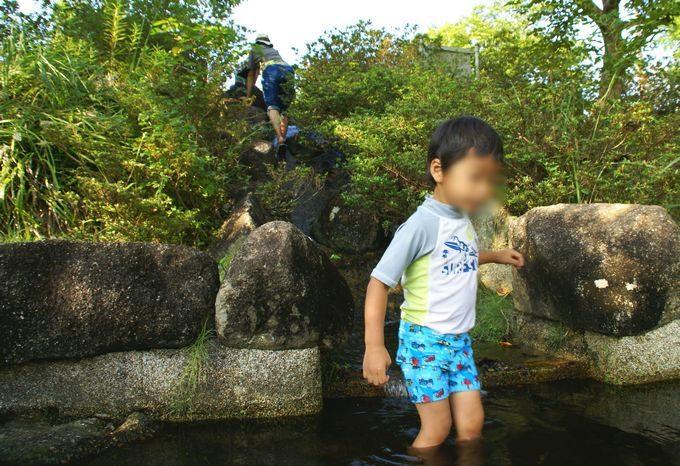 稲ヶ崎キャンプ場 小川で川遊び1