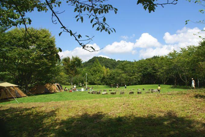 稲ヶ崎キャンプ場 フリーサイト1