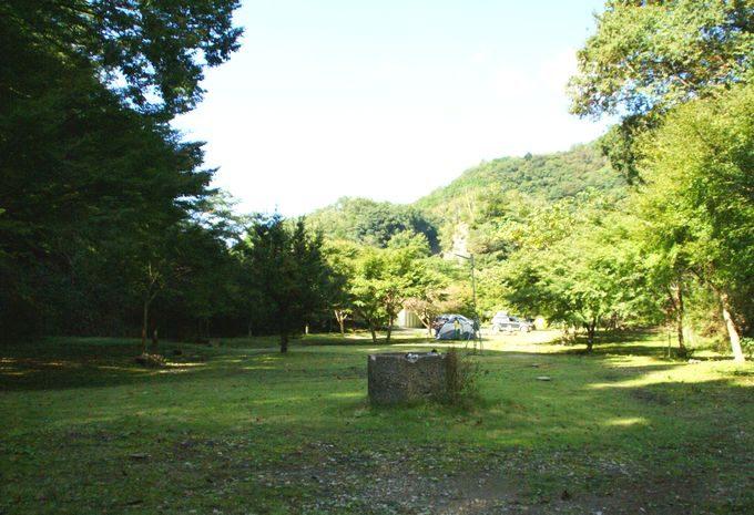 南側奥からの眺め(29-50番サイト)