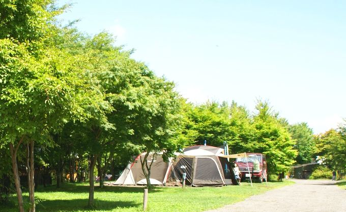 コールマンのテントを張った風景
