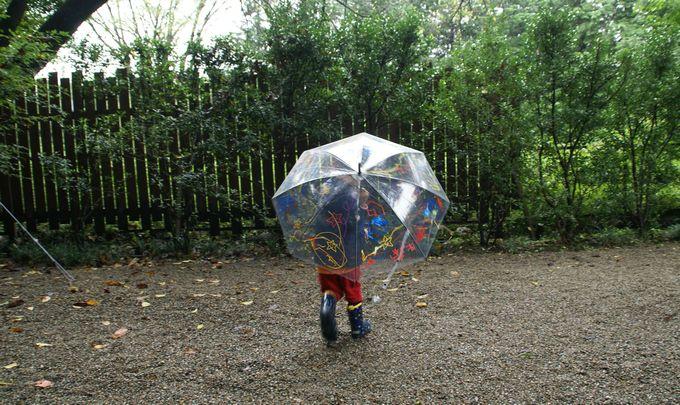 ペイント傘が完成