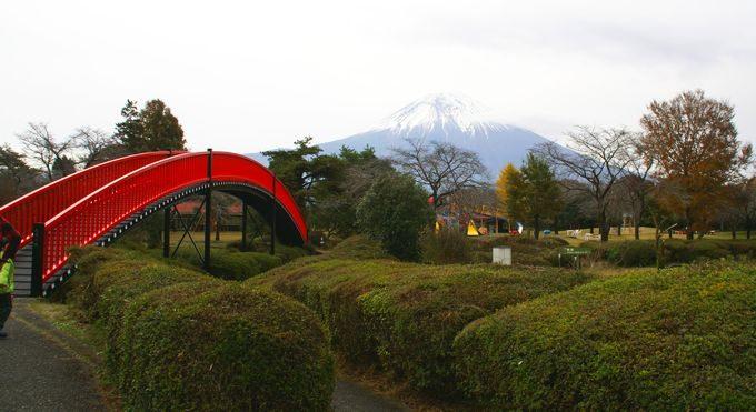もちや遊園地から見える富士山