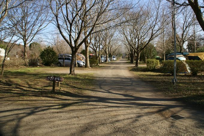 イレブンオートキャンプパーク サイト風景1