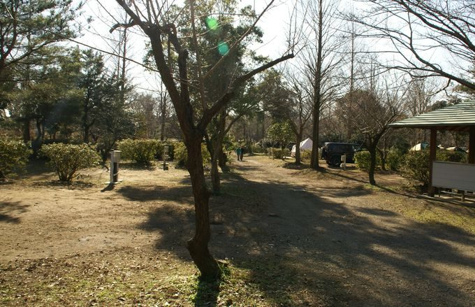 イレブンオートキャンプパーク サイト風景9