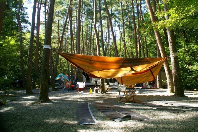 テントを木に吊るして干す