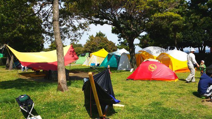 ビッグアグネスのテント
