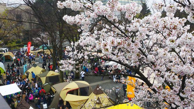 アウトドアデイジャパン東京2017桜