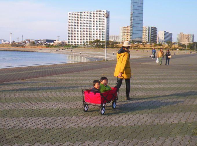 キャリーカートに子供が2人乗る