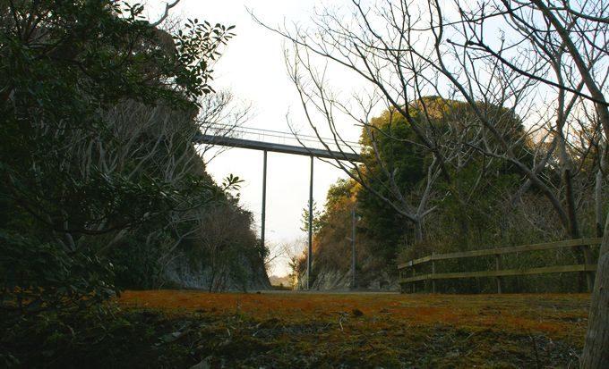ワイルドキッズ岬の橋