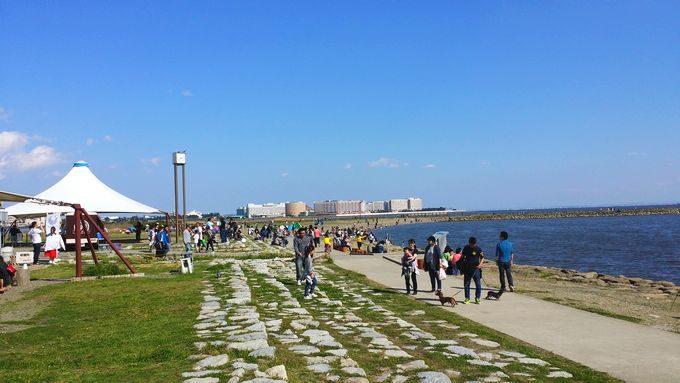 葛西海浜公園の砂浜 ディズニーランド方面