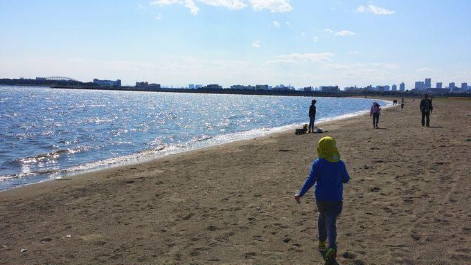 葛西海浜公園の砂浜 ゲートブリッジ方面