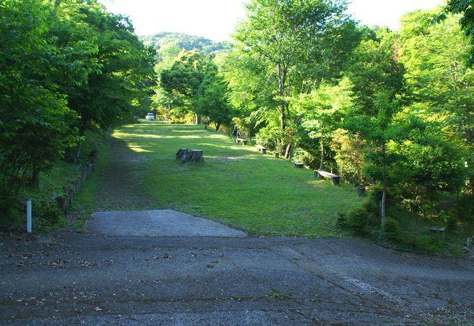 オートキャンプ場志駒の東エリアの中段