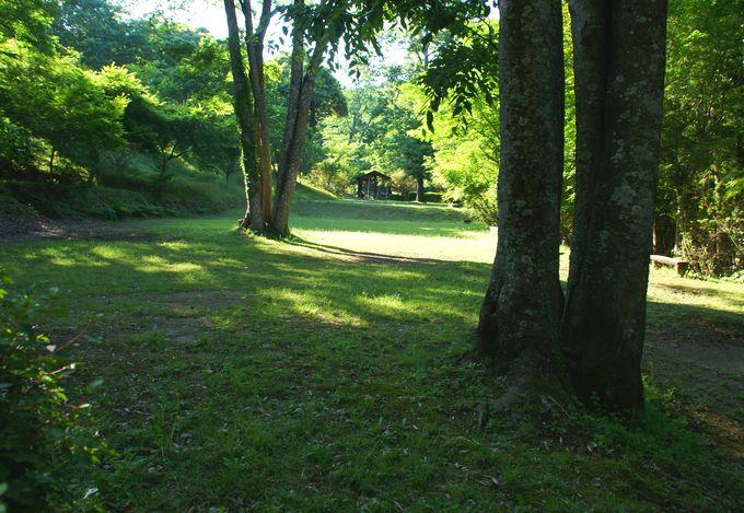 オートキャンプ場志駒の東エリアの下段