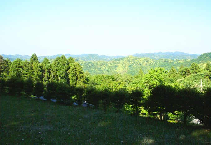 オートキャンプ場志駒の西エリア 一番上からの眺め(東側)