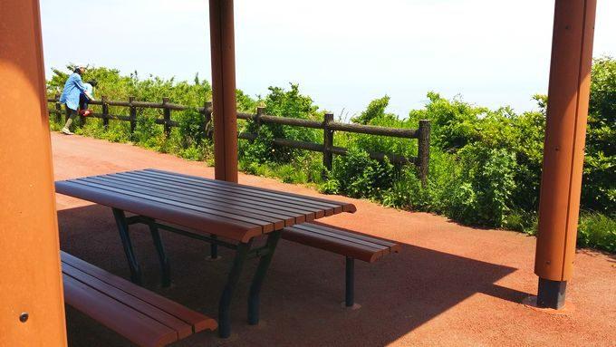 滝知山のベンチ