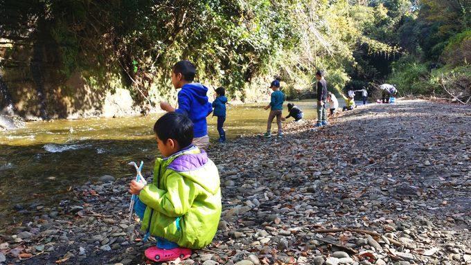 柿山田オートキャンプガーデンで川遊び