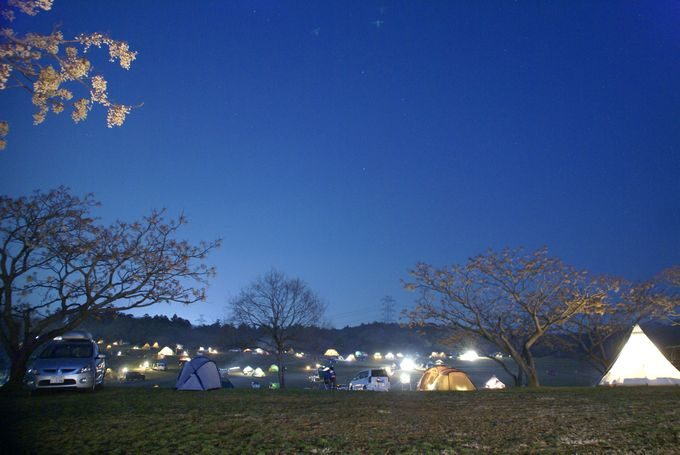 森のまきばの夜景 AC電源付きサイトNo.1から