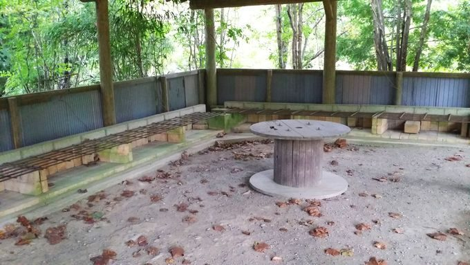 ロマンの森オートキャンプ場 サイト奥の炊事場2