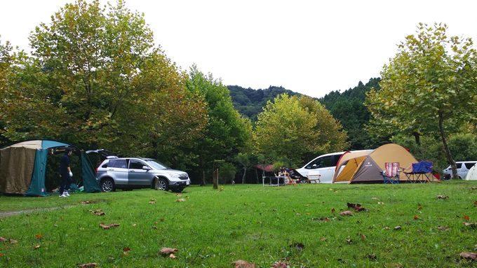 ロマンの森オートキャンプ場 サイト4