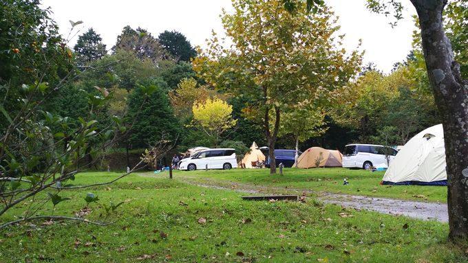 ロマンの森オートキャンプ場 サイト8