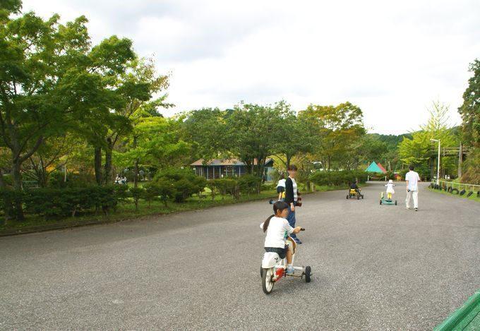 ロマンの森共和国 おもしろ自転車の道路