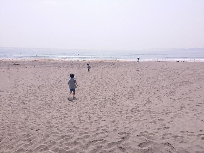 海に向ってダッシュ