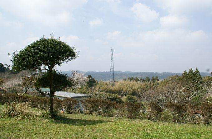 大原上布施オートキャンプ場の眺望