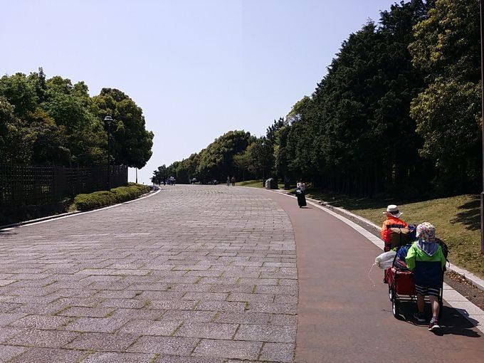 葛西臨海公園のデイキャンプ場に向って歩く
