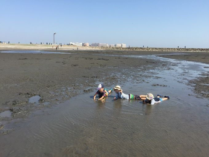 葛西臨海公園で干潟遊び