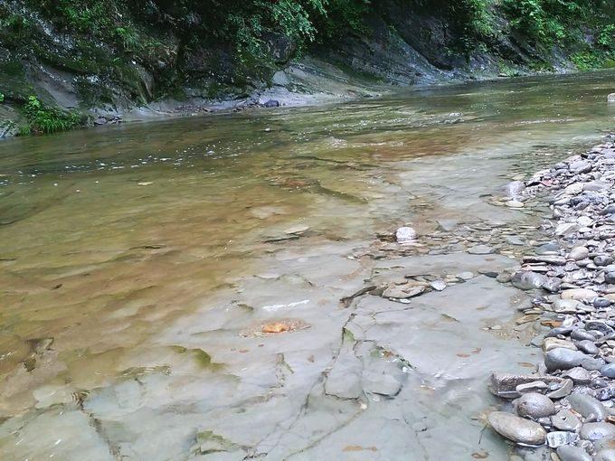 千石台オートキャンプ場近くの川の水が綺麗で浅い