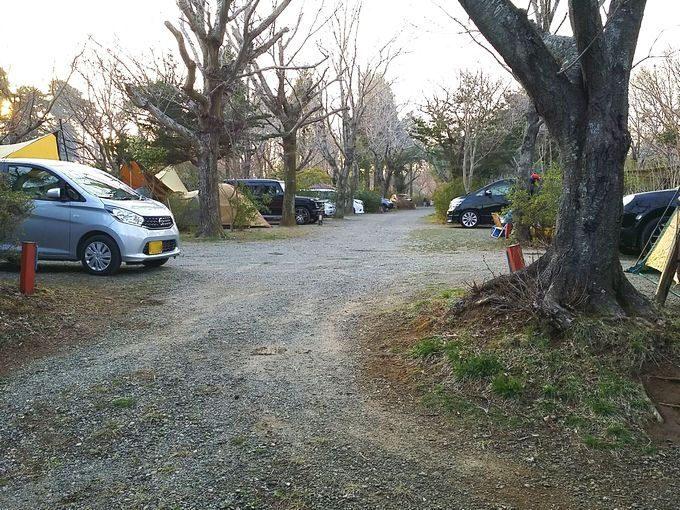 有野実苑オートキャンプ場 サイトCの通路