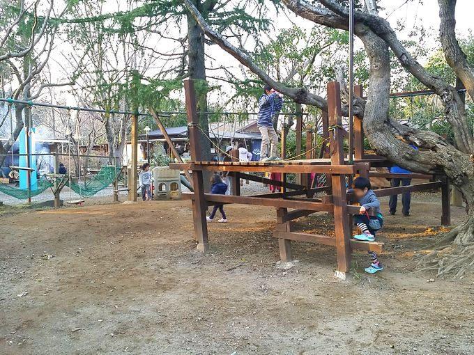 有野実苑オートキャンプ場のサイトA~C中央のアスレチック