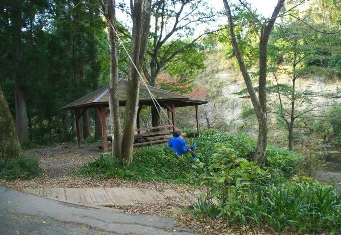 柿山田オートキャンプガーデンのサイトBのブランコ