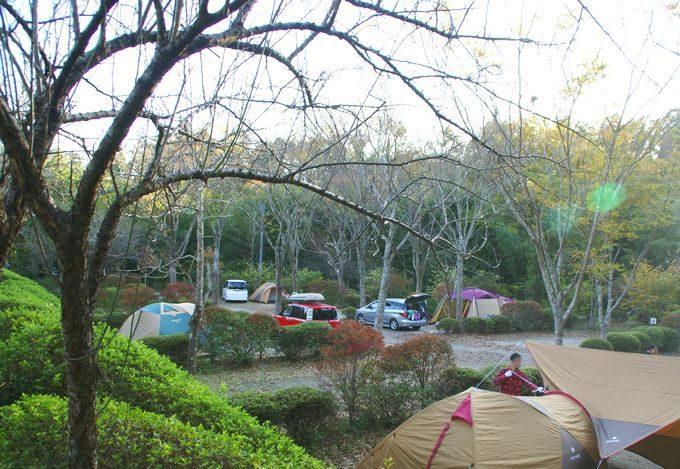柿山田オートキャンプガーデンのサイトCの景色