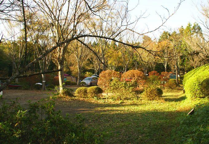 柿山田オートキャンプガーデンのサイトCの雰囲気